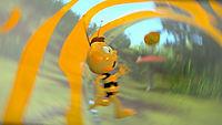 Die Biene Maja - DVD 1 - Produktdetailbild 3