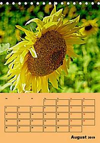 Die Biene und die Farbe gelb (Tischkalender 2019 DIN A5 hoch) - Produktdetailbild 8