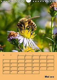 Die Biene und die Farbe gelb (Wandkalender 2019 DIN A4 hoch) - Produktdetailbild 5