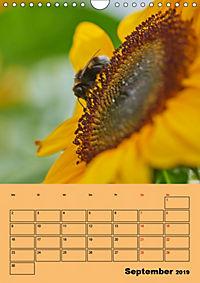 Die Biene und die Farbe gelb (Wandkalender 2019 DIN A4 hoch) - Produktdetailbild 9