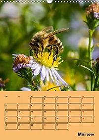 Die Biene und die Farbe gelb (Wandkalender 2019 DIN A3 hoch) - Produktdetailbild 5
