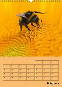 Die Biene und die Farbe gelb (Wandkalender 2019 DIN A3 hoch) - Produktdetailbild 3