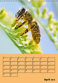 Die Biene und die Farbe gelb (Wandkalender 2019 DIN A3 hoch) - Produktdetailbild 4