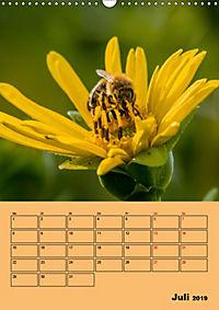 Die Biene und die Farbe gelb (Wandkalender 2019 DIN A3 hoch) - Produktdetailbild 7