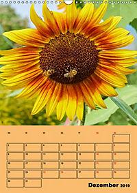 Die Biene und die Farbe gelb (Wandkalender 2019 DIN A3 hoch) - Produktdetailbild 12