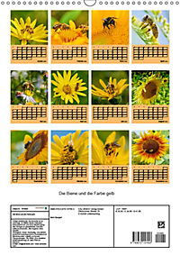 Die Biene und die Farbe gelb (Wandkalender 2019 DIN A3 hoch) - Produktdetailbild 13