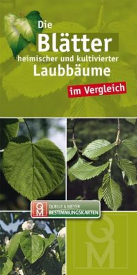 Die Blätter heimischer und kultivierter Laubbäume im Vergleich, Leporello