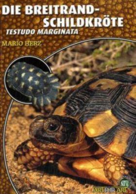 Die Breitrandschildkröte, Mario Herz