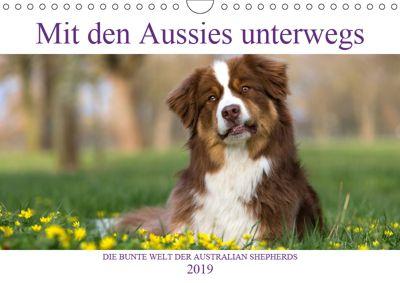 DIE BUNTE WELT DER AUSTRALIAN SHEPHERDS (Wandkalender 2019 DIN A4 quer), Annett Mirsberger