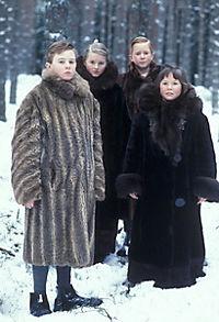 Die Chroniken von Narnia, Episode 1 - Der König von Narnia - Produktdetailbild 9