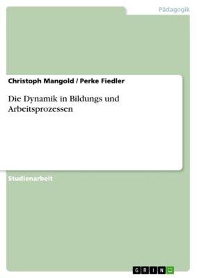 Die Dynamik in Bildungs und Arbeitsprozessen, Christoph Mangold, Perke Fiedler