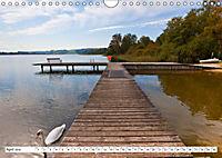 Die Flachgauer Seen (Wandkalender 2019 DIN A4 quer) - Produktdetailbild 4