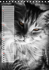 DIE GEFÜHLSWELT (Tischkalender 2019 DIN A5 hoch) - Produktdetailbild 2