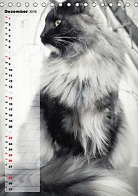 DIE GEFÜHLSWELT (Tischkalender 2019 DIN A5 hoch) - Produktdetailbild 12