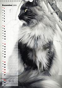 DIE GEFÜHLSWELT (Wandkalender 2019 DIN A3 hoch) - Produktdetailbild 12