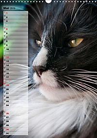 DIE GEFÜHLSWELT (Wandkalender 2019 DIN A3 hoch) - Produktdetailbild 5