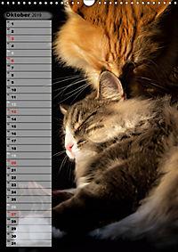 DIE GEFÜHLSWELT (Wandkalender 2019 DIN A3 hoch) - Produktdetailbild 10