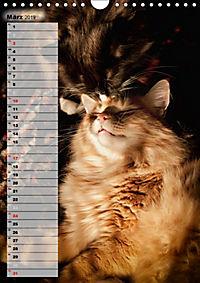 DIE GEFÜHLSWELT (Wandkalender 2019 DIN A4 hoch) - Produktdetailbild 3