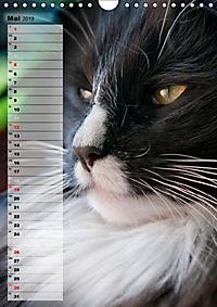 DIE GEFÜHLSWELT (Wandkalender 2019 DIN A4 hoch) - Produktdetailbild 5