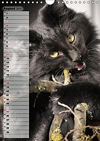 DIE GEFÜHLSWELT (Wandkalender 2019 DIN A4 hoch) - Produktdetailbild 8