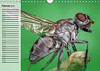 Die geheimnisvolle Welt der Insekten (Wandkalender 2019 DIN A4 quer) - Produktdetailbild 2
