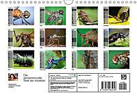 Die geheimnisvolle Welt der Insekten (Wandkalender 2019 DIN A4 quer) - Produktdetailbild 13