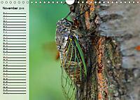Die geheimnisvolle Welt der Insekten (Wandkalender 2019 DIN A4 quer) - Produktdetailbild 11