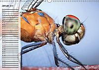 Die geheimnisvolle Welt der Insekten (Wandkalender 2019 DIN A3 quer) - Produktdetailbild 1