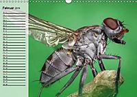 Die geheimnisvolle Welt der Insekten (Wandkalender 2019 DIN A3 quer) - Produktdetailbild 2