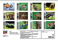 Die geheimnisvolle Welt der Insekten (Wandkalender 2019 DIN A2 quer) - Produktdetailbild 13