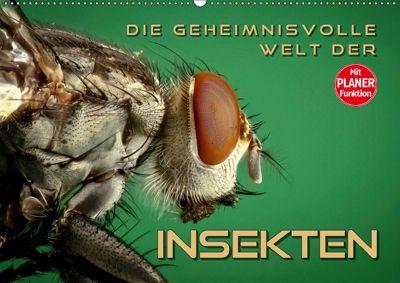 Die geheimnisvolle Welt der Insekten (Wandkalender 2019 DIN A2 quer), Renate Bleicher