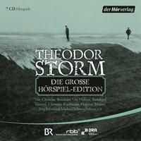 Die grosse Hörspiel-Edition, 7 Audio-CDs, Theodor Storm