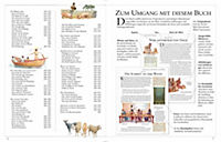 Die große illustrierte Kinderbibel - Produktdetailbild 2