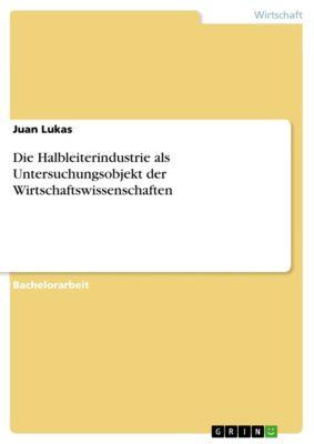 Die Halbleiterindustrie als Untersuchungsobjekt der Wirtschaftswissenschaften, Juan Lukas