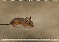 Die Hausmaus Anneliese (Wandkalender 2019 DIN A2 quer) - Produktdetailbild 5