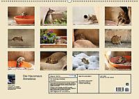 Die Hausmaus Anneliese (Wandkalender 2019 DIN A2 quer) - Produktdetailbild 13