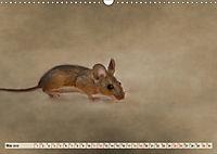 Die Hausmaus Anneliese (Wandkalender 2019 DIN A3 quer) - Produktdetailbild 5