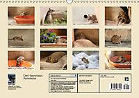 Die Hausmaus Anneliese (Wandkalender 2019 DIN A3 quer) - Produktdetailbild 13