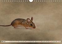 Die Hausmaus Anneliese (Wandkalender 2019 DIN A4 quer) - Produktdetailbild 5