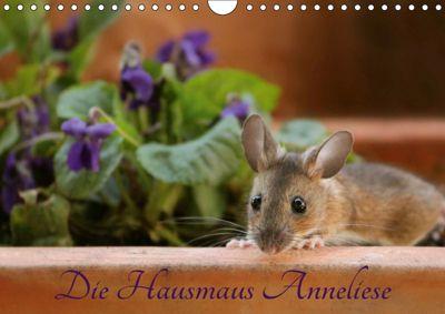 Die Hausmaus Anneliese (Wandkalender 2019 DIN A4 quer), Heike Hultsch