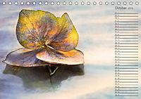 Die Hortensie und ihre vielen Gesichter (Tischkalender 2019 DIN A5 quer) - Produktdetailbild 10