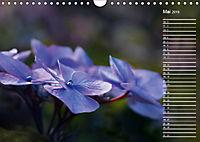Die Hortensie und ihre vielen Gesichter (Wandkalender 2019 DIN A4 quer) - Produktdetailbild 5
