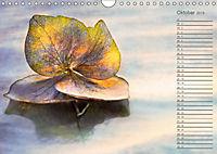 Die Hortensie und ihre vielen Gesichter (Wandkalender 2019 DIN A4 quer) - Produktdetailbild 10
