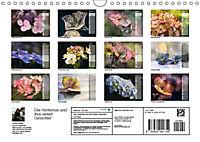 Die Hortensie und ihre vielen Gesichter (Wandkalender 2019 DIN A4 quer) - Produktdetailbild 13