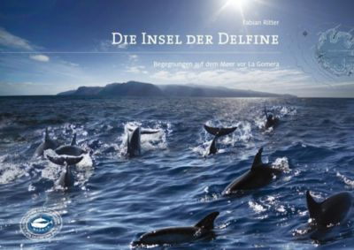 Die Insel der Delfine, Fabian Ritter