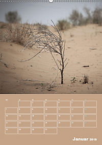Die Kizilkum-Wüste in Usbekistan - Zwischen Rauheit und Romantik (Wandkalender 2019 DIN A2 hoch) - Produktdetailbild 1