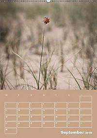 Die Kizilkum-Wüste in Usbekistan - Zwischen Rauheit und Romantik (Wandkalender 2019 DIN A2 hoch) - Produktdetailbild 9