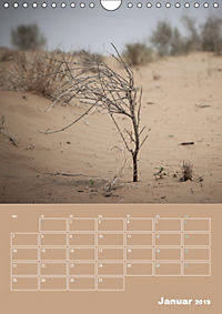 Die Kizilkum-Wüste in Usbekistan - Zwischen Rauheit und Romantik (Wandkalender 2019 DIN A4 hoch) - Produktdetailbild 1