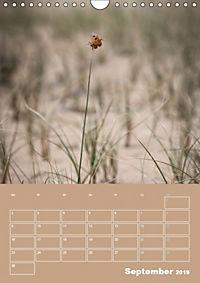 Die Kizilkum-Wüste in Usbekistan - Zwischen Rauheit und Romantik (Wandkalender 2019 DIN A4 hoch) - Produktdetailbild 9