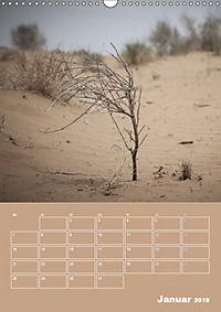 Die Kizilkum-Wüste in Usbekistan - Zwischen Rauheit und Romantik (Wandkalender 2019 DIN A3 hoch) - Produktdetailbild 1